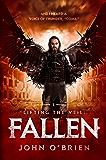 Lifting the Veil: Fallen