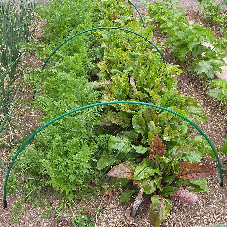 Flexible Green Garden Cloche Crop Protection Hoops ((Pack of 5 & 10 Anchors)) Gardening-Naturally