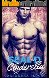 Seal'd Cinderella: Bad Boy Billionaire Boss Office Romance