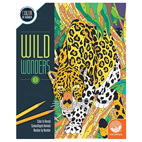 Wild Wonders Color By Number Book 1