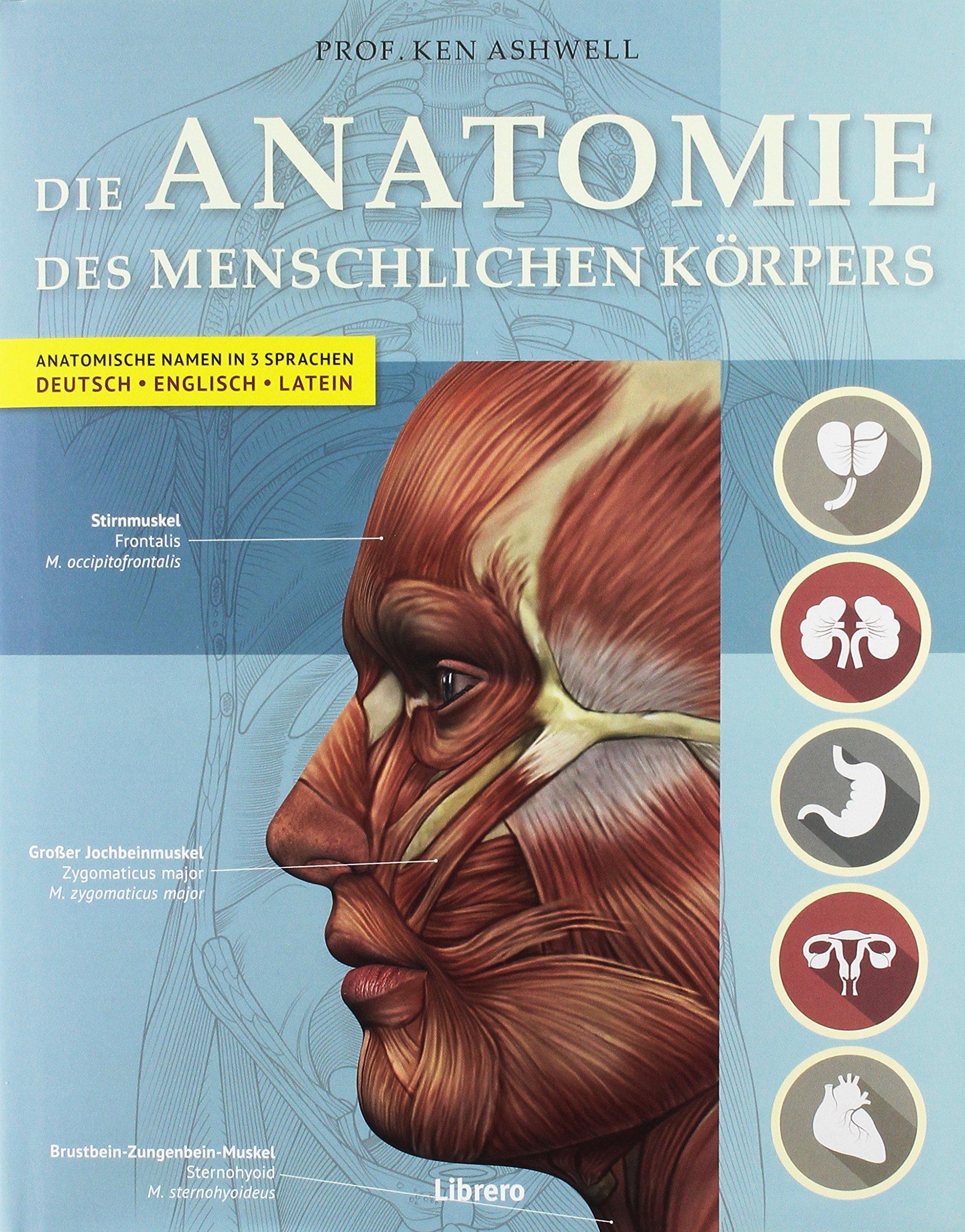 Der Menschliche Körper: Amazon.de: Ken Ashwell: Bücher
