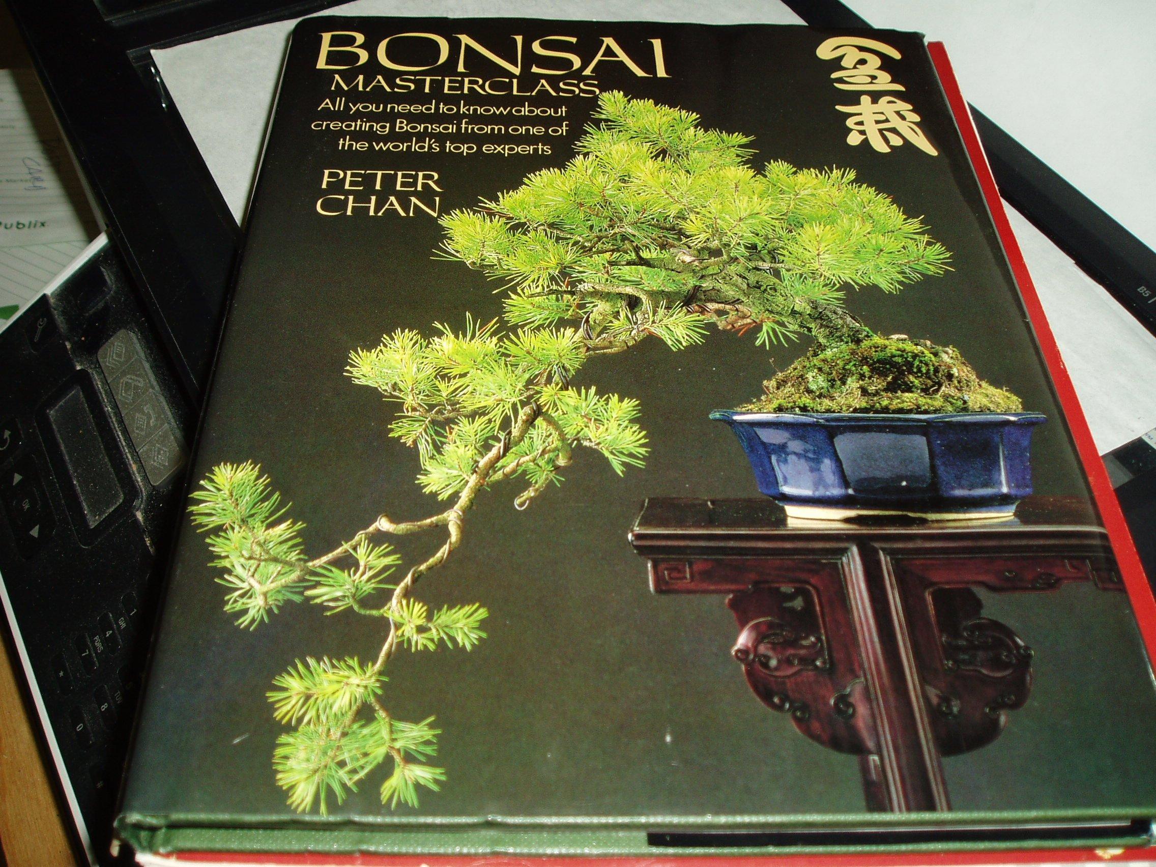 bonsai-masterclass