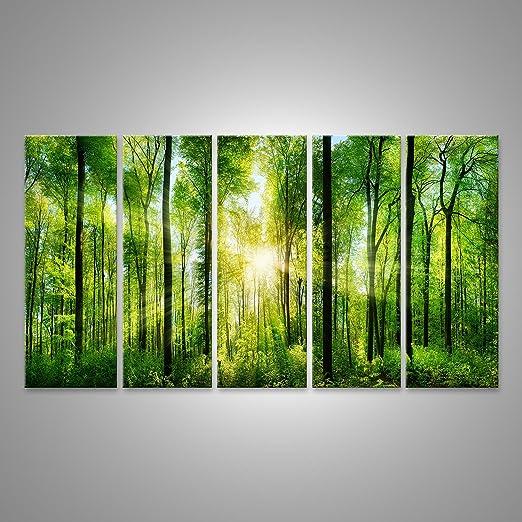 1 opinioni per Quadro moderno Verde Bosco Con Alberi E La Luce Del Sole Stampa su tela- Quadro