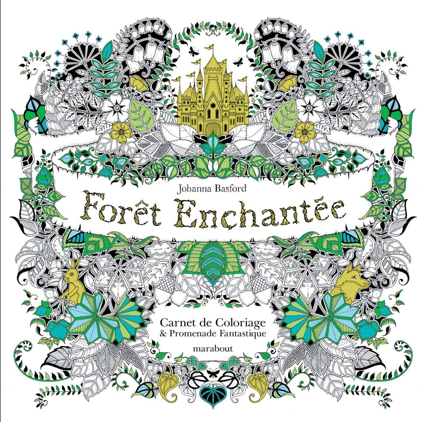 Amazon Forªt enchantée Carnet de coloriage et Chasse au trésor antistress Johanna Basford Livres
