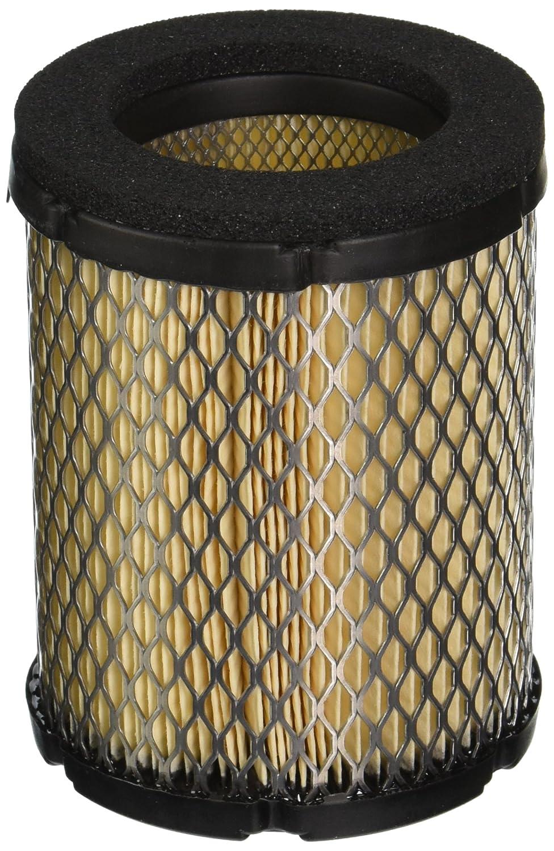 Cummins 1403295 Onan Air Filter