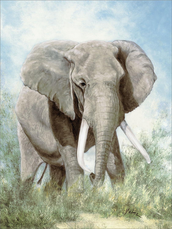 Artland Qualitätsbilder I Alu Dibond Bilder Afrika I Größe: 45 x 60 cm I Tier I Wildtiere I Elefant Malerei I Grün I Kunstdrucke auf Alu I A0TK