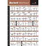 """BARBELL WORKOUT EXERCISE POSTER LAMINATED - Home Gym Weight Lifting Chart - Build Muscle Tone & Tighten - Strength Training Routine - Body Building Guide w/ Free Weights & Resistance - 20""""x30"""""""