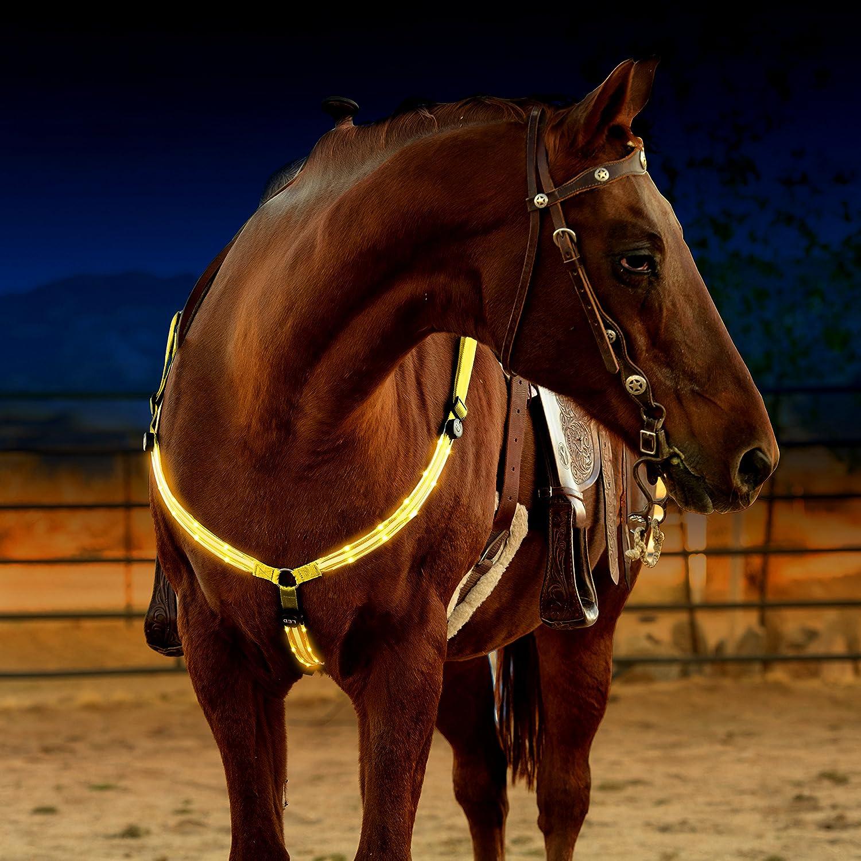 Arnés para caballo con luces LED, recargable mediante USB ...