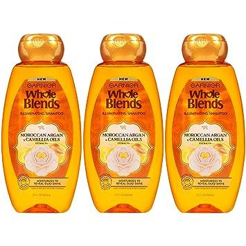 Garnier Hair Care Whole Blends Illuminating Shampoo