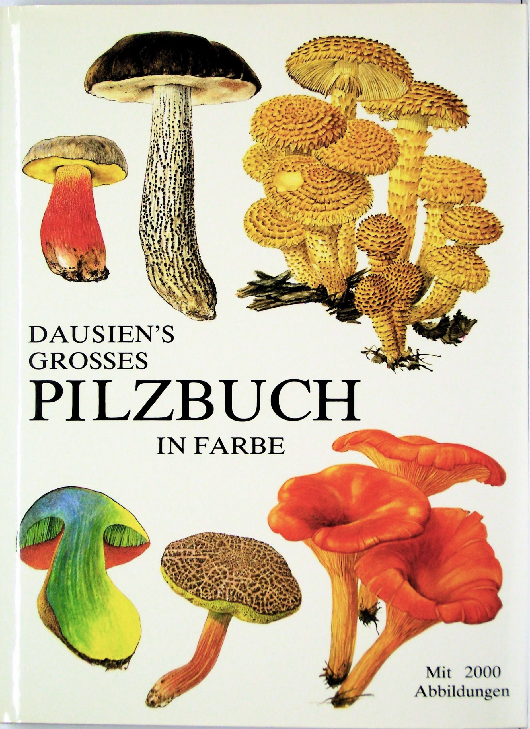 Dausiens grosses Pilzbuch in Farbe