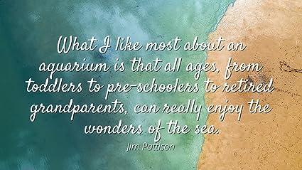 Amazoncom Jim Pattison Famous Quotes Laminated Poster Print