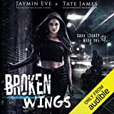 Broken Wings: A Dark High School Romance (Dark Legacy, Book 1)