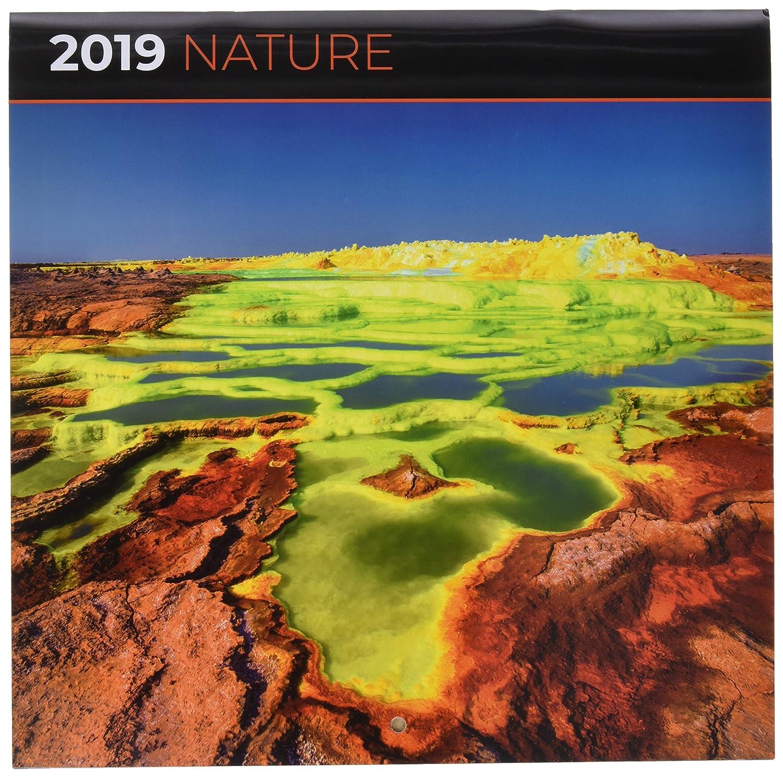 Grupo Erik - Calendario Da Muro 2019 Nature 30 X 30 Cm Grupo Erik Editores CP19066