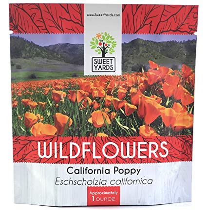 Amazon california orange poppy wildflower seeds bulk 1 ounce california orange poppy wildflower seeds bulk 1 ounce packet over 20000 native seeds mightylinksfo