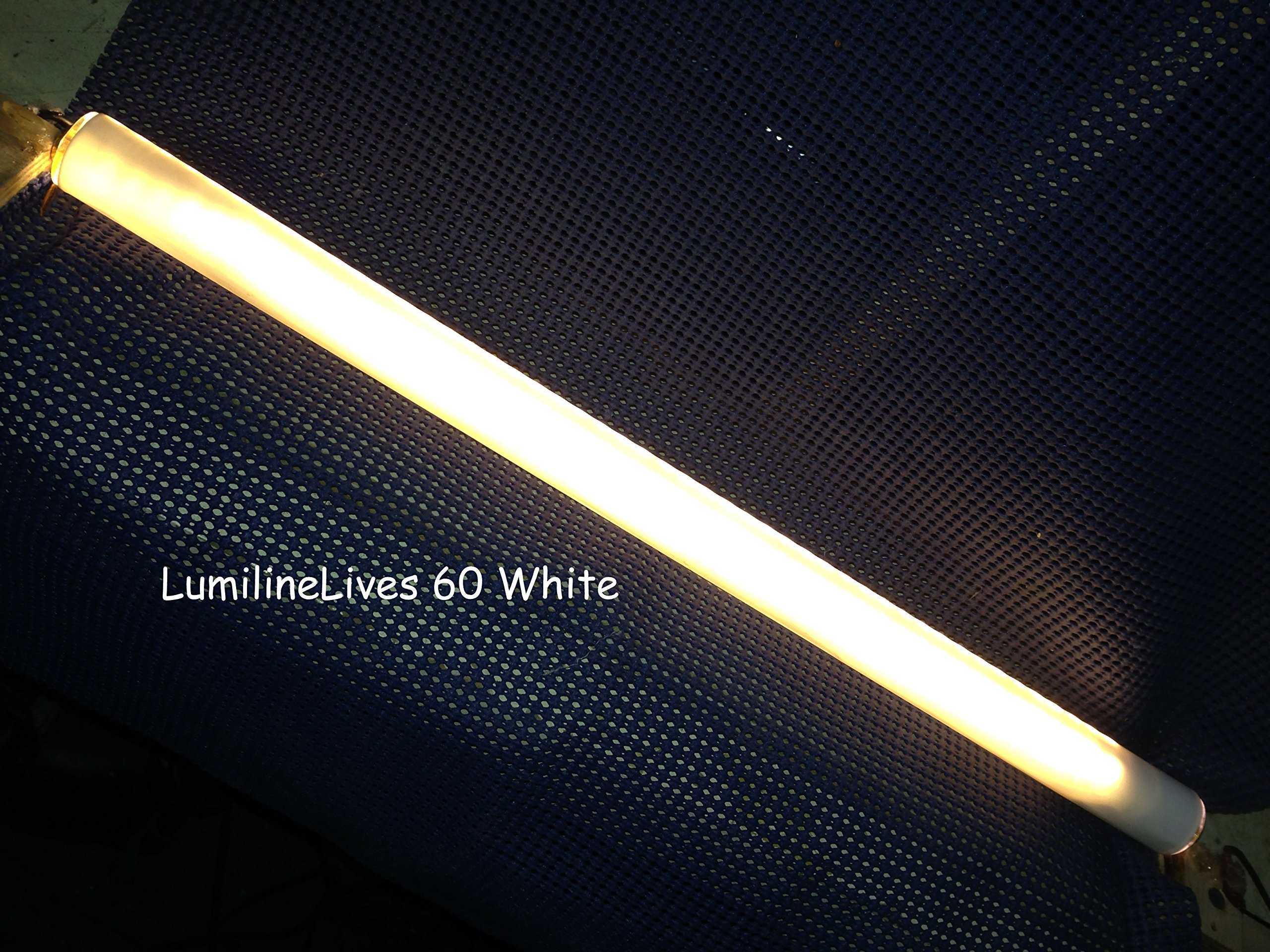 GE 17266 - L60/W Lumiline Special Application Light Bulb