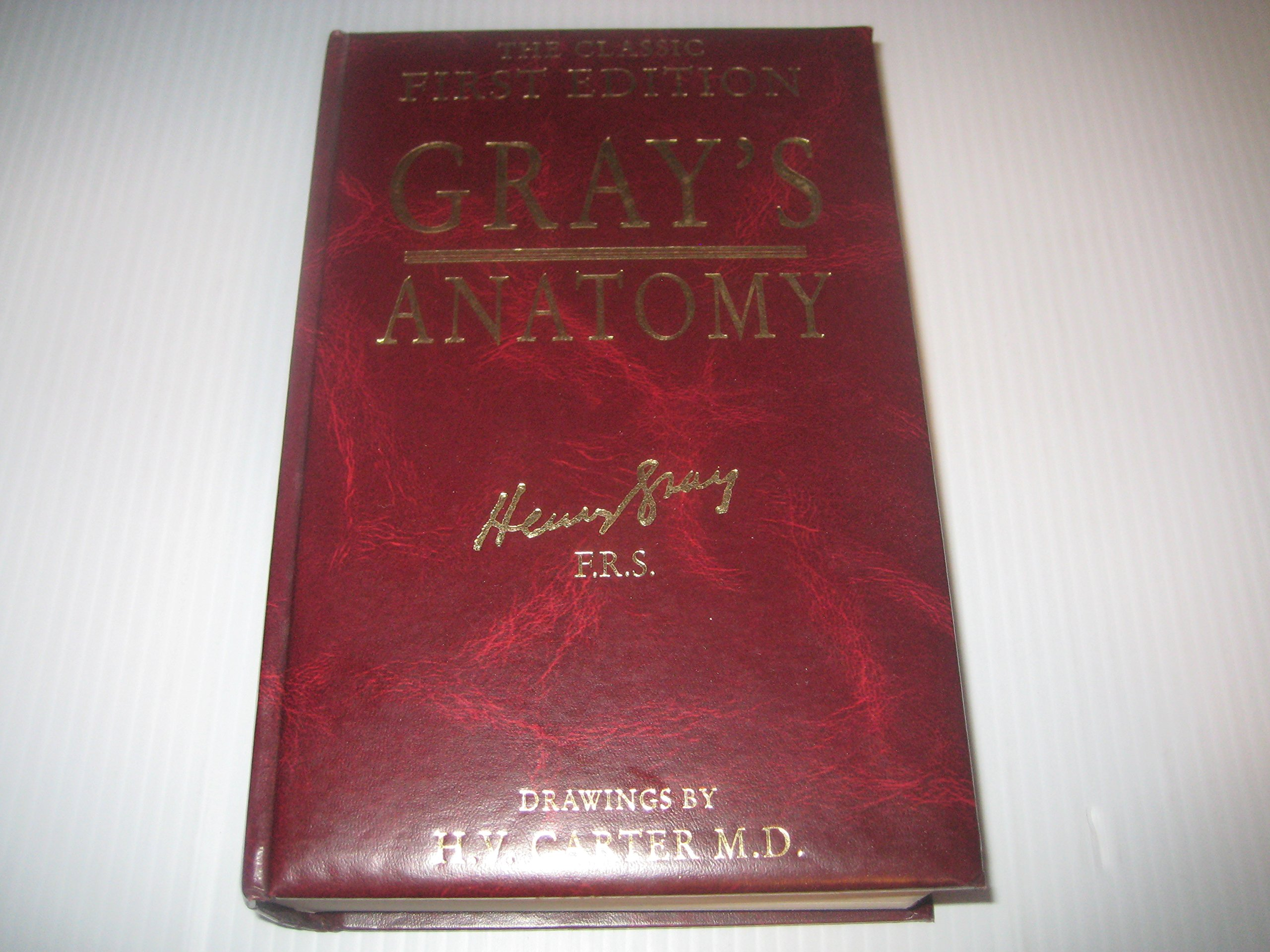 The Classic First Edition Grays Anatomy Descriptive and Surgical ...