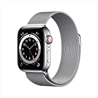 New AppleWatch Series 6 (GPS + Cellular, 40mm) - Silver Stainless Steel Case with Silver Milanese Loop