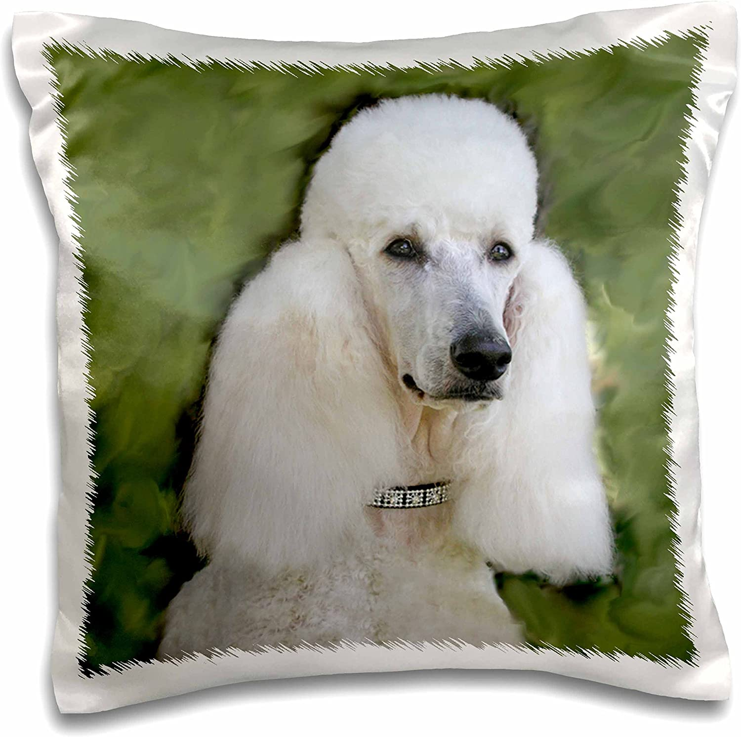 Amazon Com 3drose Standard Poodle Pillow Case 16 Inch Pc 1298 1 Arts Crafts Sewing