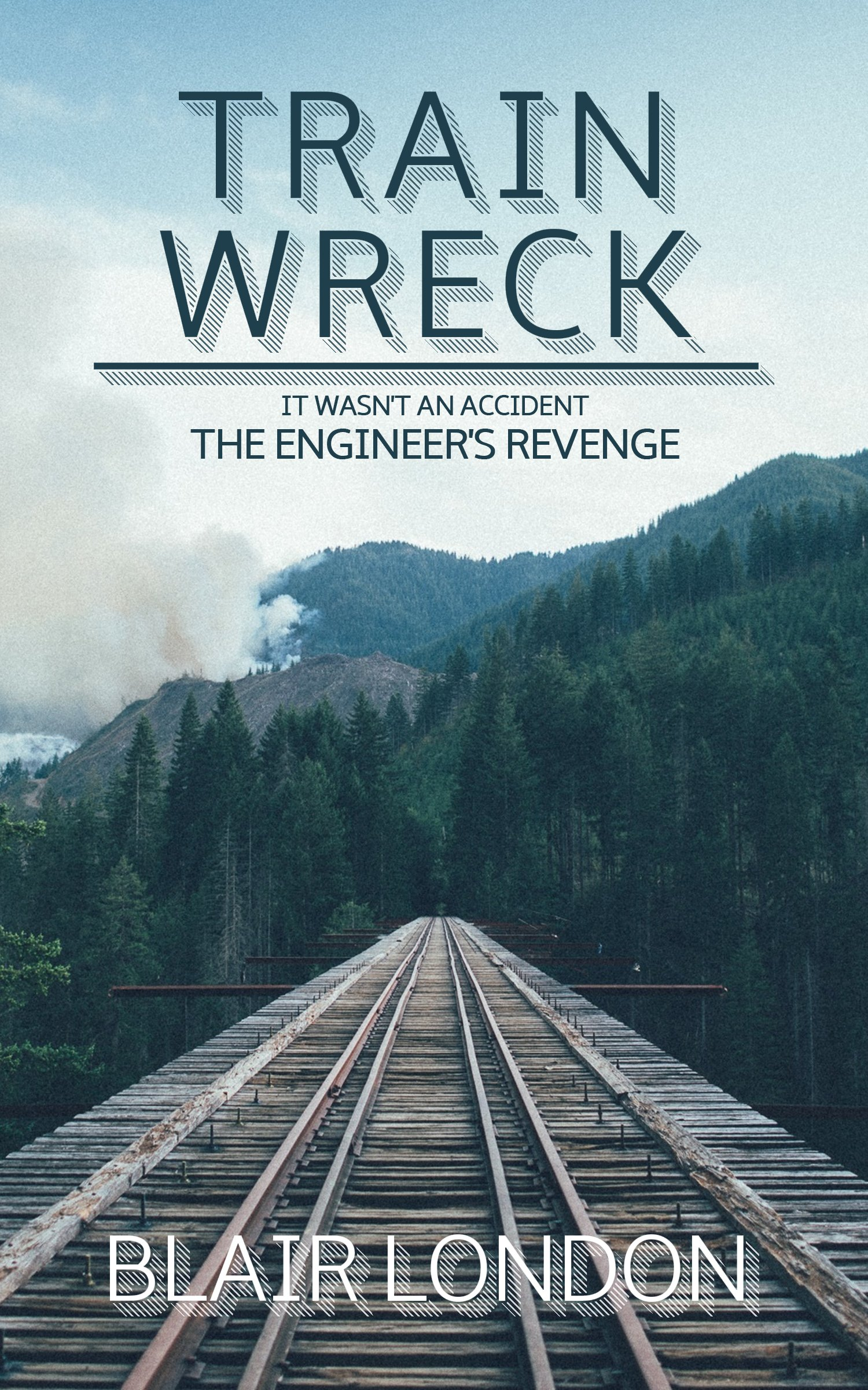 Train Wreck: It wasn't an accident… the engineers revenge ebook