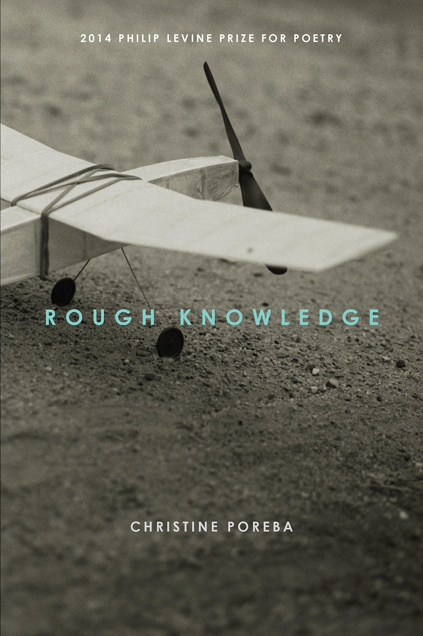 Rough Knowledge pdf