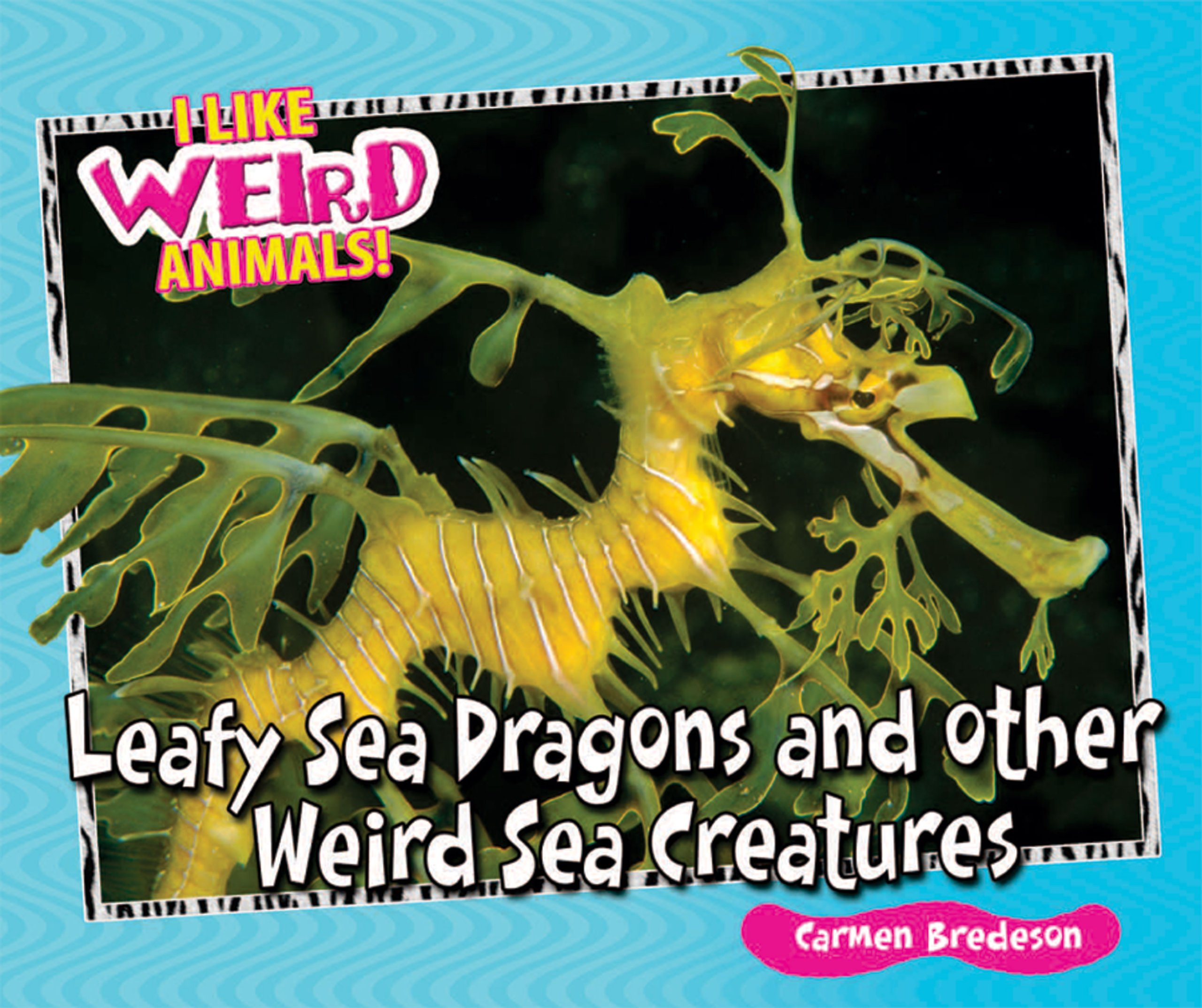 Download Leafy Sea Dragons and Other Weird Sea Creatures (I Like Weird Animals!) ebook