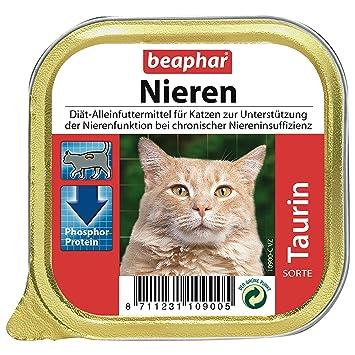 Beaphar Riñón Dietas + Taurina, 1er Pack (1 x 100 g): Amazon.es: Productos para mascotas