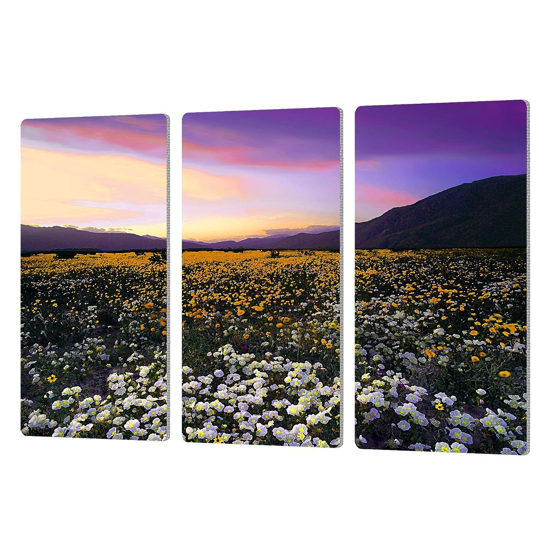 ArtWall Dean Uhlinger 3 Piece Borrego Desert Spring Artmetalz Aluminum Print Set 36 by 54 36 by 54 0uhl023c3654a