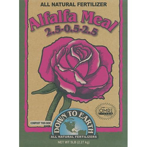 6 Best Fertilizers For Roses 2019