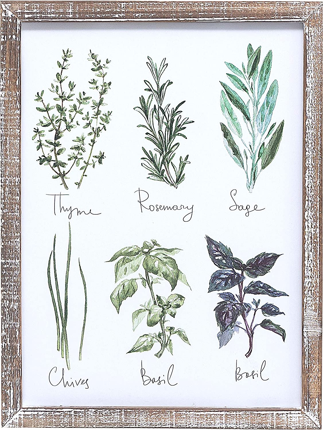 """Barnyard Designs Vintage Herb and Spices Botanical Wood Framed Plaques, Primitive Country Farmhouse Home Decor Sign 16"""" x 12"""""""