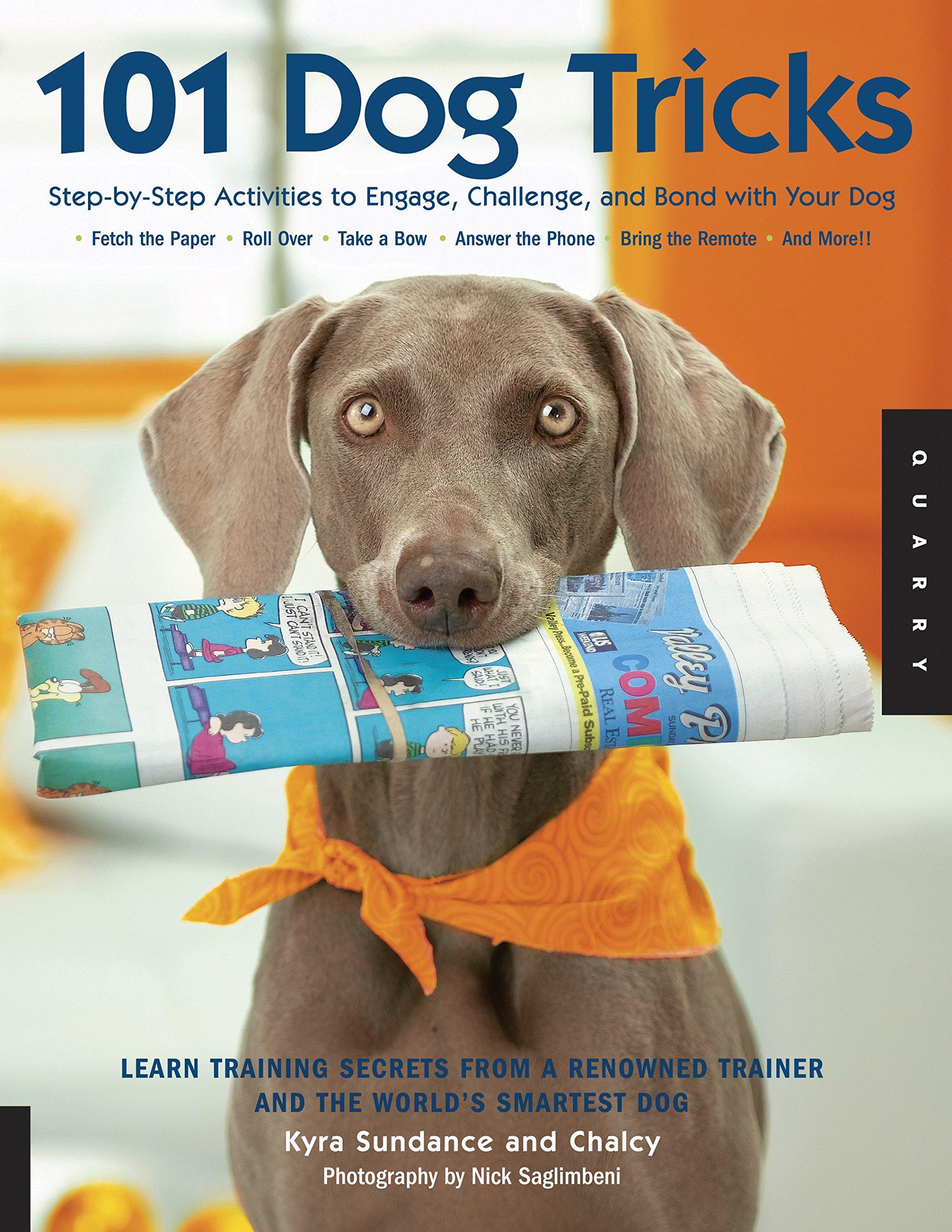 101 Dog Tricks Activities Challenge product image