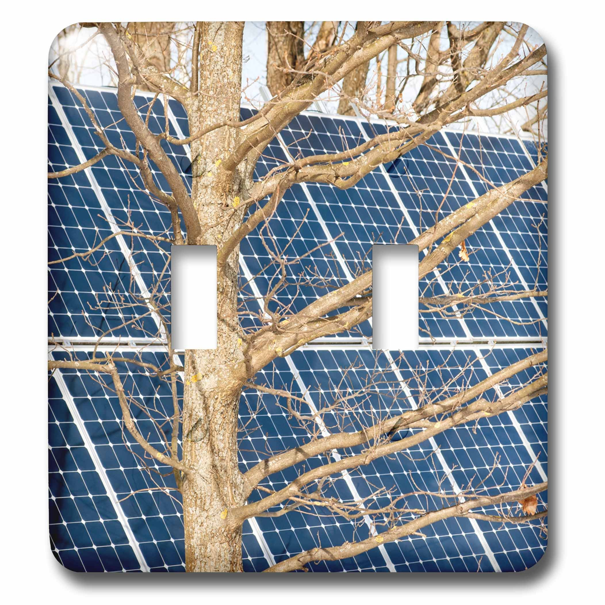 3dRose Alexis Photography - Objects - Young leafless oak tree and a solar power panel. Both turned sunward - Light Switch Covers - double toggle switch (lsp_283847_2)