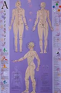 Acupressure Chart - Points & Meridians