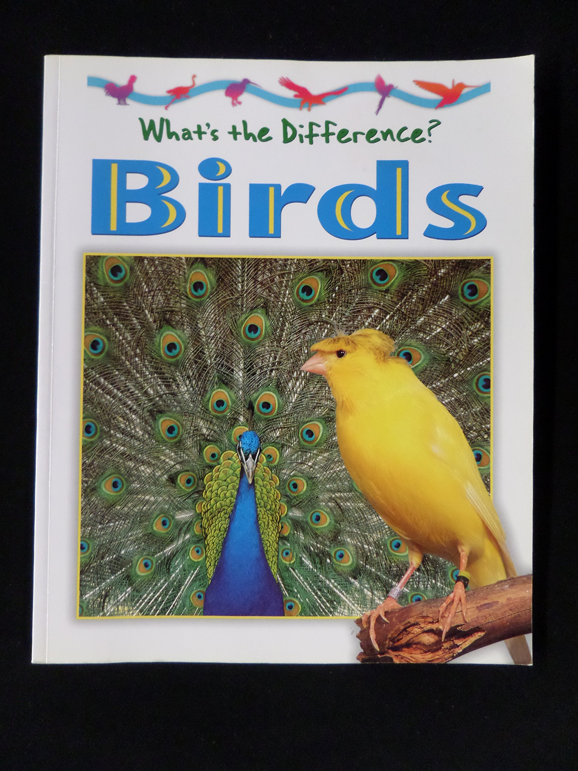 Download Birds (What's the Difference) pdf