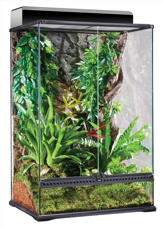 Exo Terra Natürliches Terrarium aus Glas