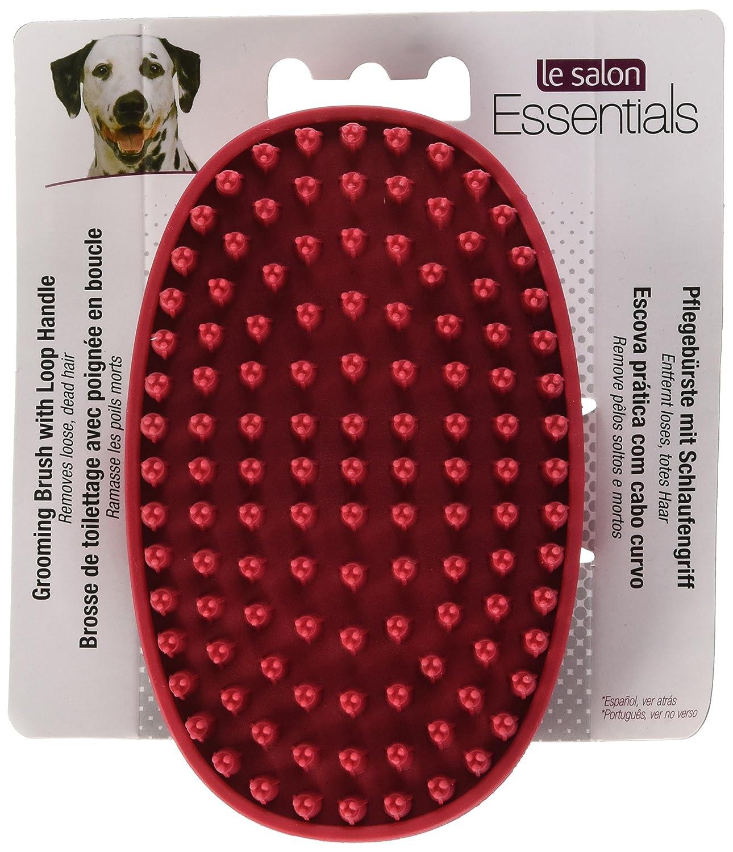 Le Salon Cepillo de Goma Almohazar para Razas de Pelo Corto: Amazon.es: Productos para mascotas