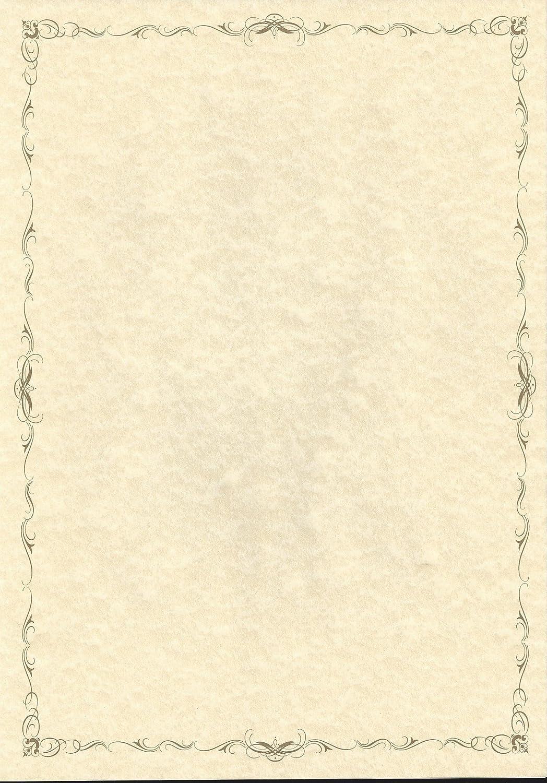 Certificate Border Delicate Gold- 100 per box - CT1129 100gsm ...