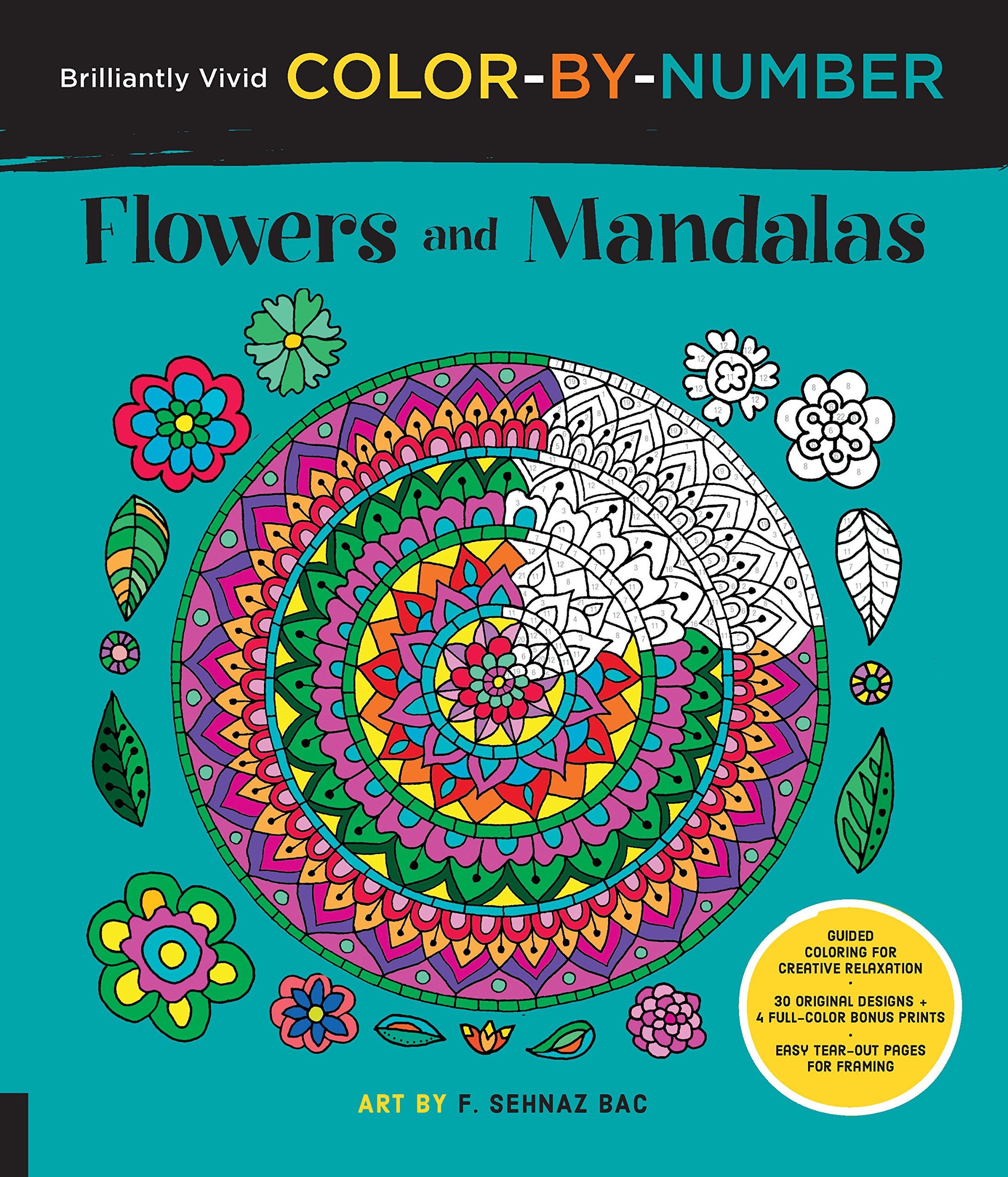 Brilliantly Vivid Color-by-Number: Flowers and Mandalas: Guided ...