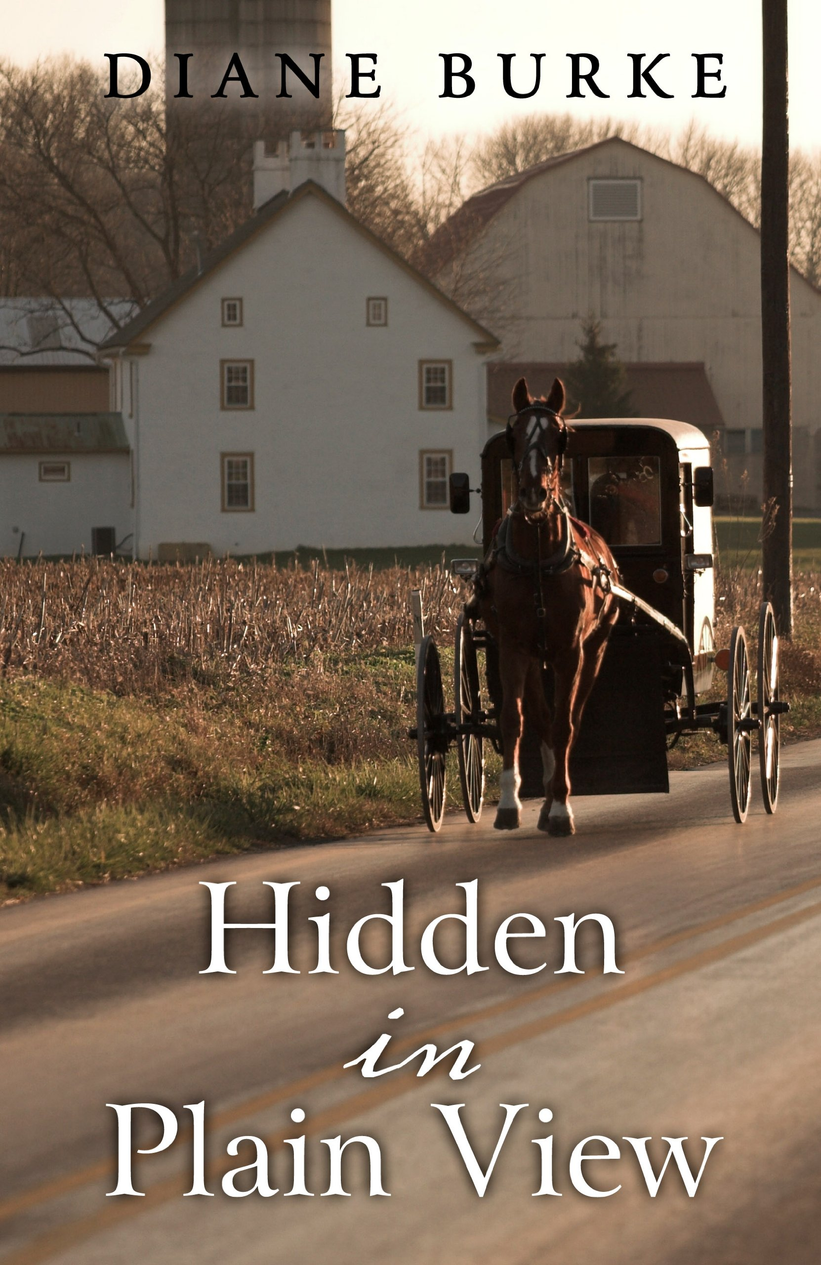 Read Online Hidden in Plain View (Thorndike Press Large Print Christian Mystery) pdf epub