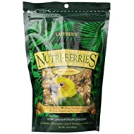 Lafeber's Gourmet Tropical Fruit Nutri-Berries for Conures 10-Ounce Bag
