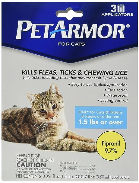 Amazon.com: Pet Armor para gatos (3 Mes): Mascotas