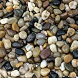 "Natural Decorative Polished Mixed Pebbles 3/8"" Gravel Size (2-lb Bag)"