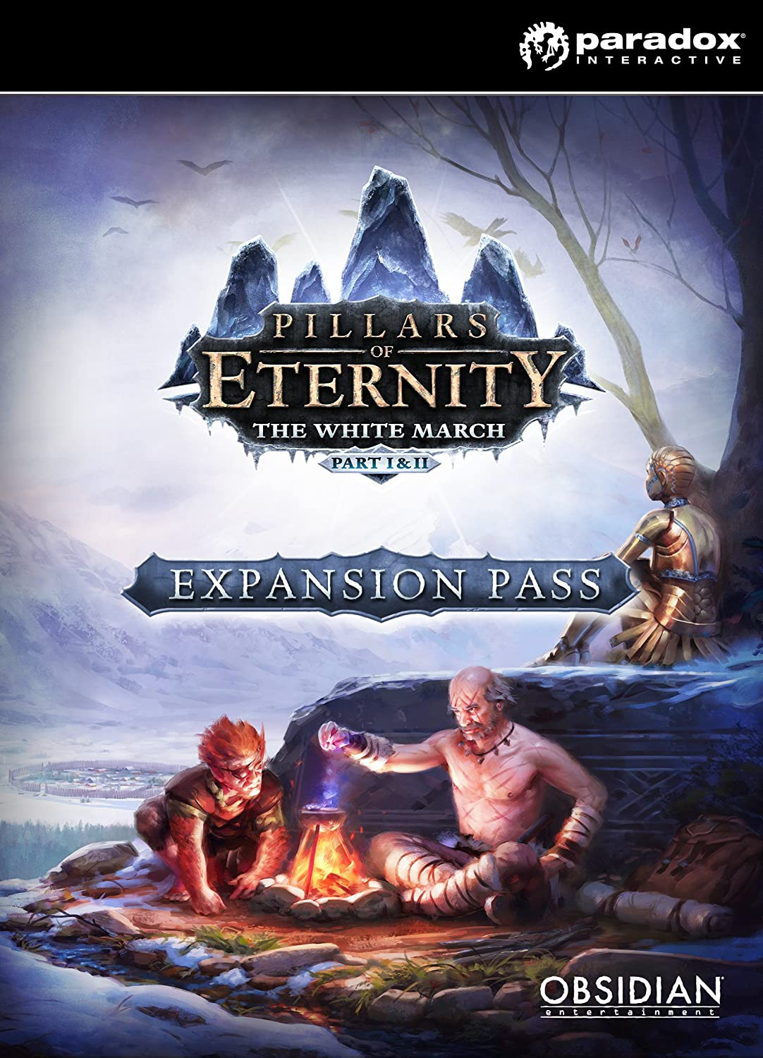 Pillars of Eternity - Expansion Pass [PC Code - Steam