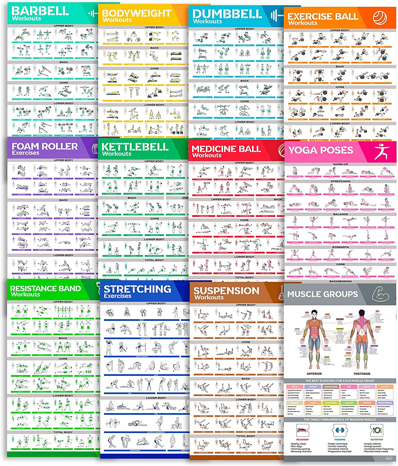 [12-PACK] Laminated Workout Poster Set - Perfect Large Size Workout Posters For Home Gym - Exercise Posters Include Dumbbell, Yoga Poses, Resistance Band, Kettlebell, Stretching & More Fitness Charts