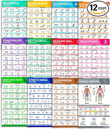 [12-PACK] Laminated Workout Poster Set - Perfect Large Size Workout Posters For Home Gym - Exercise Posters Include Dumbbell, Yoga Poses, Resistance ...