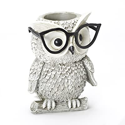 Roman Exclusive White Owl Wearing Silly Black Spectacles Planter, 9.25-Inch, Made of Dolomite/Resin : Garden & Outdoor