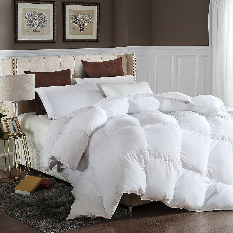 LESNNCIER Queen Down Alternative Comforter Duvet Insert All Seasons Ultra Plush Microfiber Fill Goose Down Alternative Comforter Machine Washable