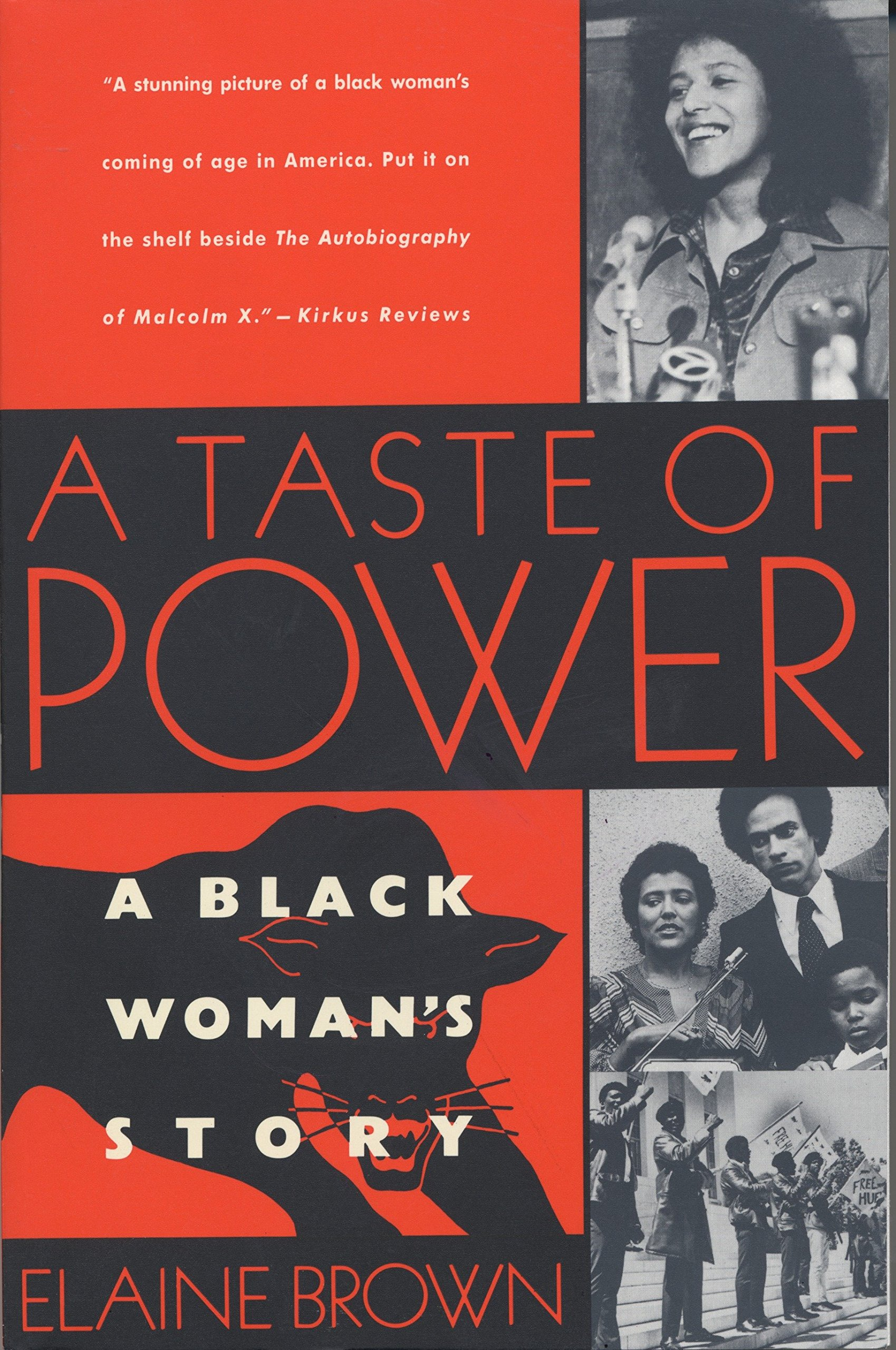 Image result for a taste of power elaine brown