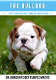 The Bulldog: A Vet's Guide on How to Care for Your Bulldog