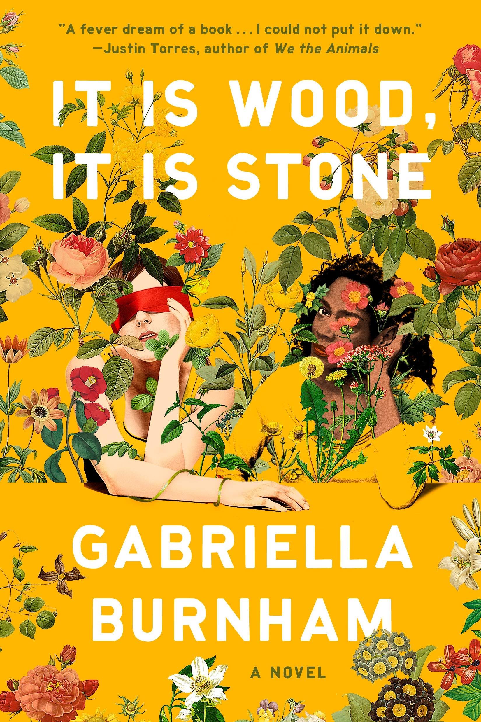 It Is Wood, It Is Stone: A Novel: Burnham, Gabriella ...