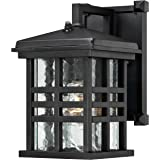 Westinghouse 6204500 Caliste 1 Light Outdoor Wall Lantern with Dusk to Dawn Sensor, Textured Black